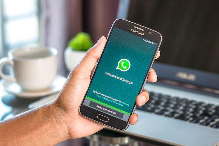 Whatsapp Newsfeed
