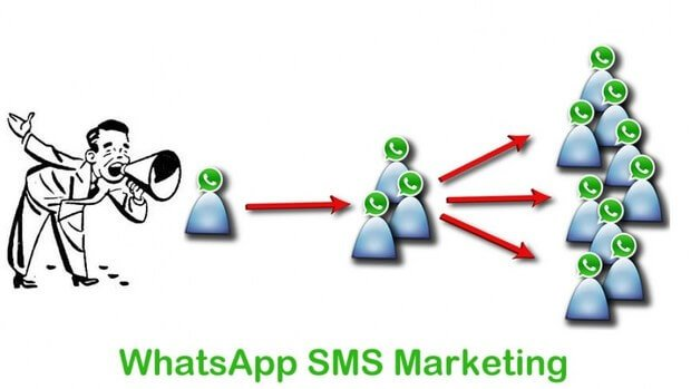 Whatsapp sms Marketing