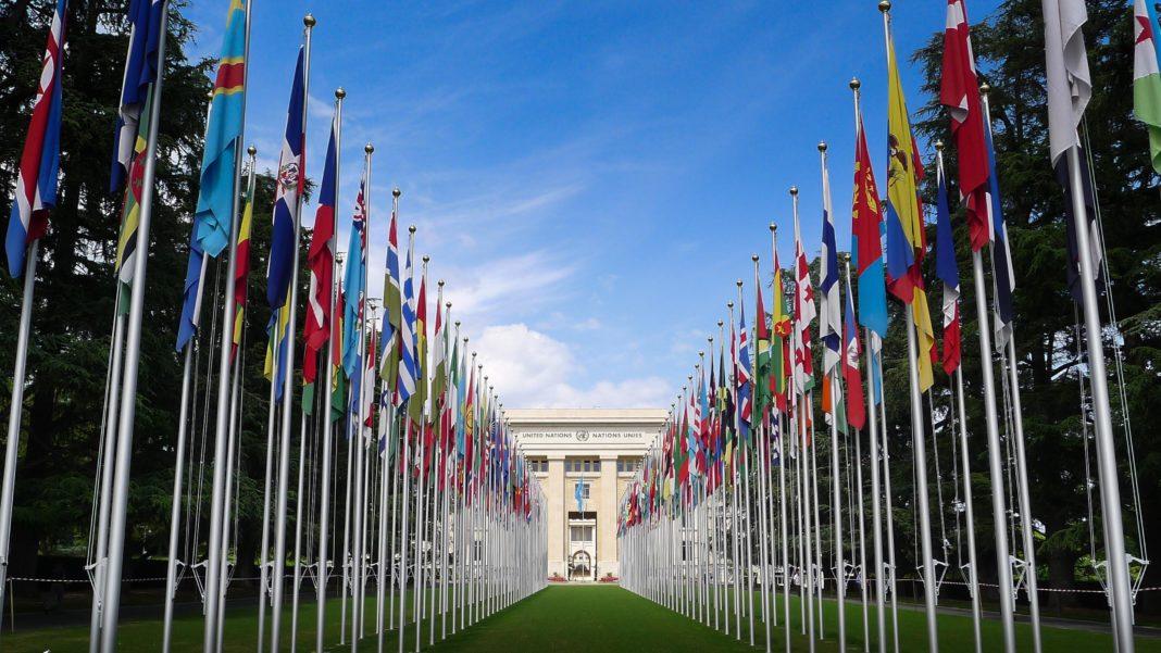 vereinte-nationen:-china-weist-vorwuerfe-des-organraubs-zurueck